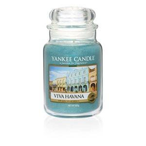 Viva Havana, Large Jar, Yankee Candle