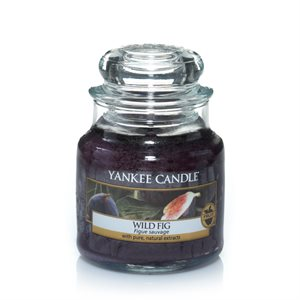 Wild Fig, Small Jar, Yankee Candle