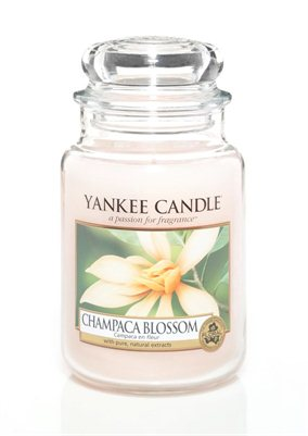 Champaca Blossom, Large Jar, Yankee Candle