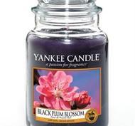 Black Plum Blossom, Large jar, Yankee Candle